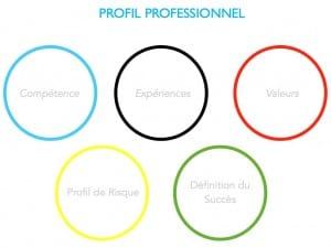 Profil professionnel du consultant