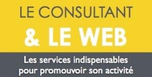 le consultant et le web